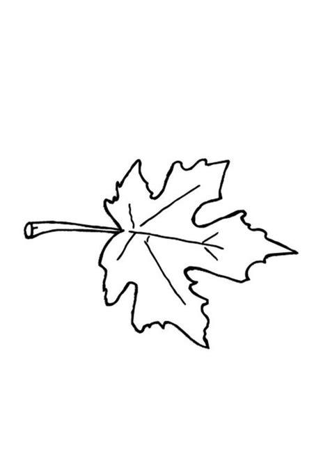 hojas de otono coloring pages dibujo para colorear hoja de oto 241 o img 9601