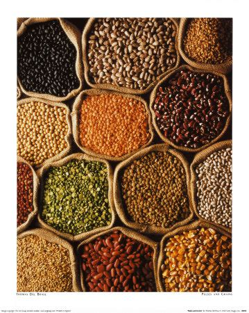 whole grains on candida diet the candida diet part ii hubpages