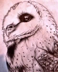 owl pencil drawing by ricekrispie96 on deviantart