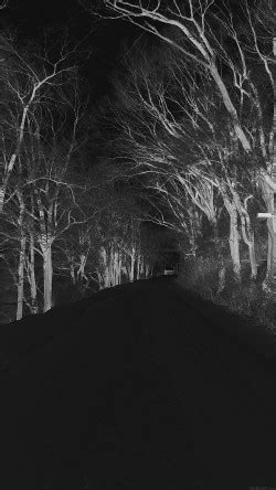 papers.co-mp51-winter-scary-road-nature-mountain-dark-33