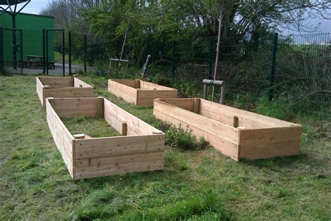 raise bed raised beds starting to grow your own vegetables ltg