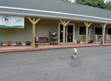 baron s k 9 country store bel air md pet supplies