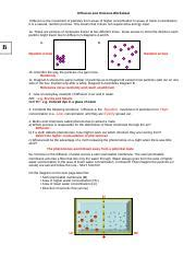 Diffusion And Osmosis Worksheet Middle School by 6 Complete The Following Sentence Osmosis Is The Passage