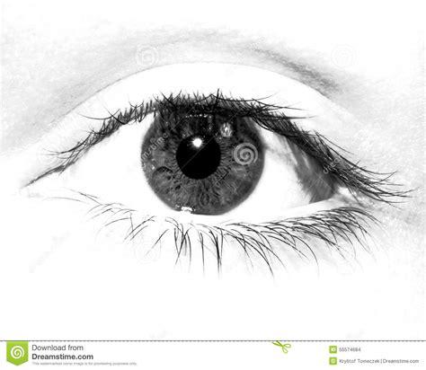 imagenes en blanco y negro de ojos ojo blanco y negro foto de archivo imagen 55574684