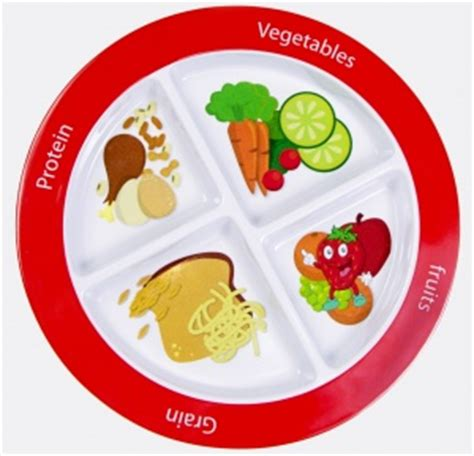 section plates for adults juggling real food and real life super healthy kids