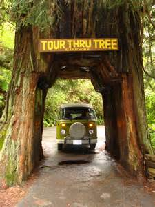 redwood forest oregon map farm houses oregon house design and decorating ideas