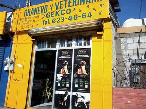 granero california tijuana granero y veterinaria gekco veterinari blvd bellas
