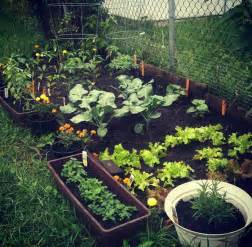 small home garden pictures photos and images for