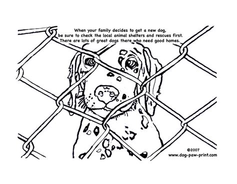 rescue dog coloring page rescue dog coloring pages kids page of a dalmation