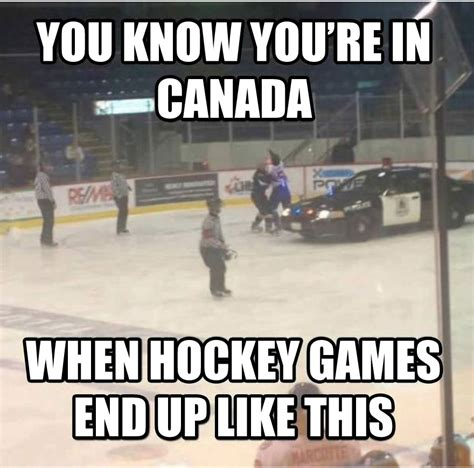 Hockey Memes - only in canada 2 the tango