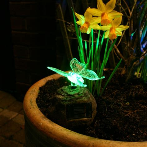 Garden Solar Lights And Tips On Choosing The Right One Decorative Garden Lights