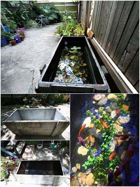 How To Interior Design Your Home 5 Outdoor Aquarium Designs That Will Bring Life To Your