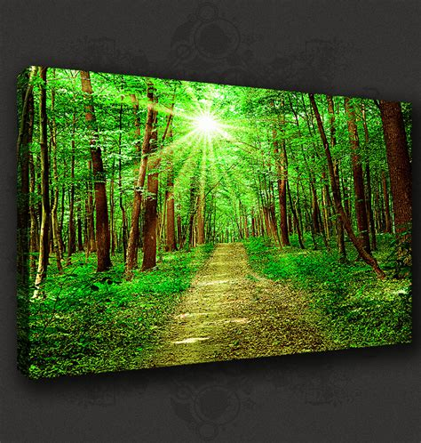 green forest sunrays landscape canvas print pop poster