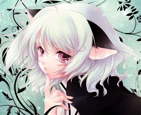 anime neko neko girl anime super fan photo 24277284 fanpop