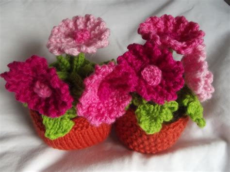knitted flowers knit your own plant kitset gerbera felt