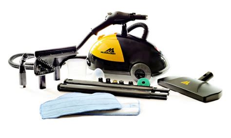 steam cleaner for bed bugs best steam cleaner for bed bugs in 2015