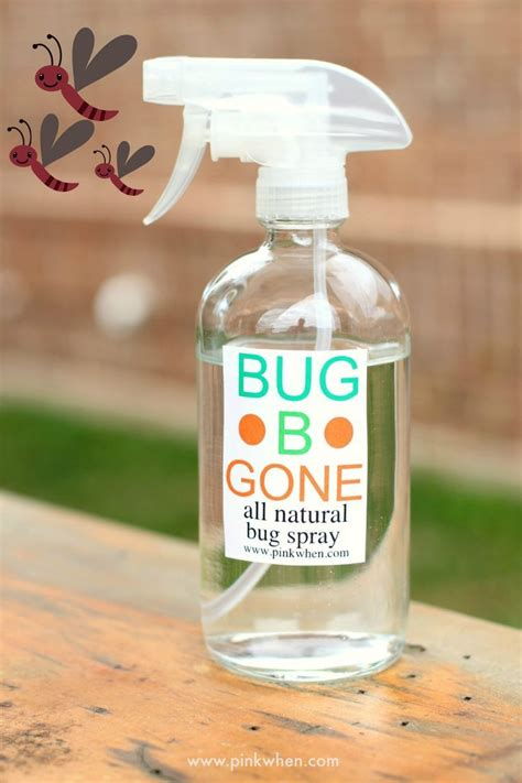 pesticide for bed bugs 17 best bed bugs pest control images on pinterest 3 4
