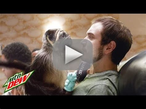 puppy superbowl bowl 50 refs scary monkeys and more the gossip