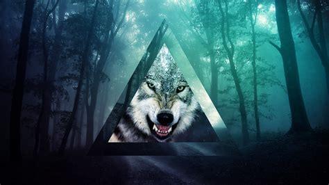 wallpaper google chrome wolf dslr 3 2 2000x1333 1440x960 1152x768