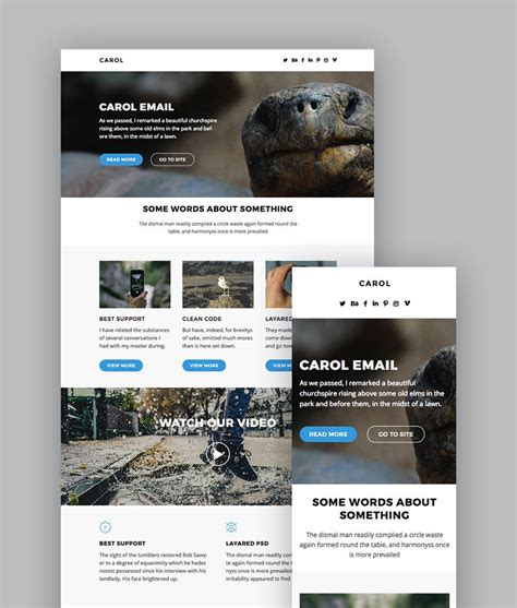 Best Mailchimp Templates To Level Up Your Business Email Newsletter 2017 Mailchimp Templates Mailchimp Template Design
