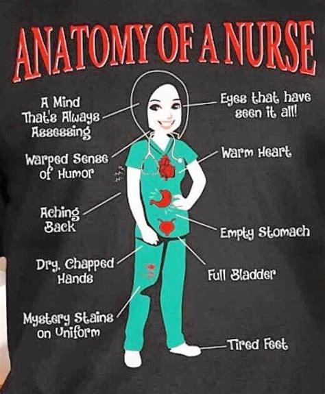 anatomy   nurse  mind   assessing eyes      warped sense