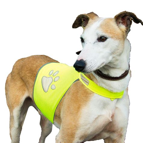 gear dogs safety gear reflective safety jacket for dogs horze