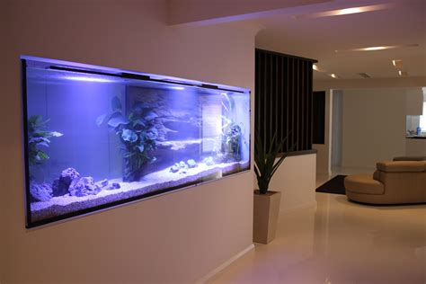 wall aquarium custom home in wall aquarium aquarium architect custom