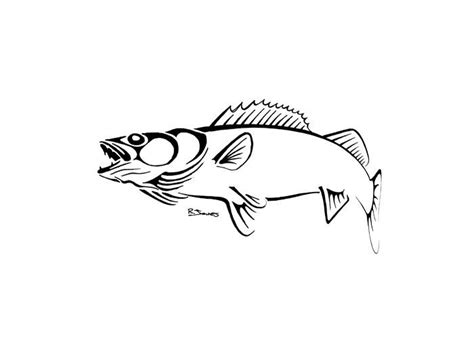 pike tattoo designs walleye outline tattoos