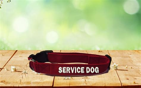 service collar service collars the sewing network