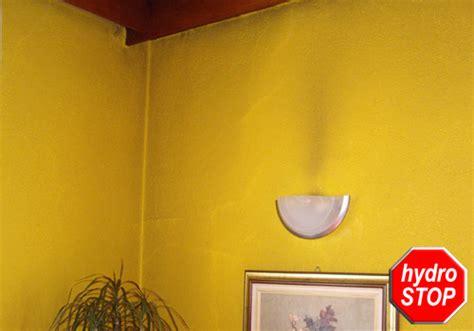 feuchte wände schimmel schlafzimmer aber welche wandfarbe