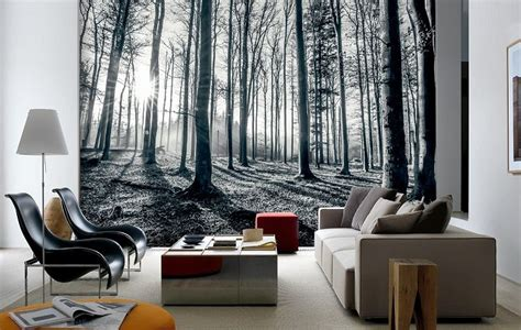 black amp white forest wall mural online store