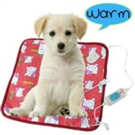 Electric Pets 17 best images about pet electric blanket on cats warm and heated bed