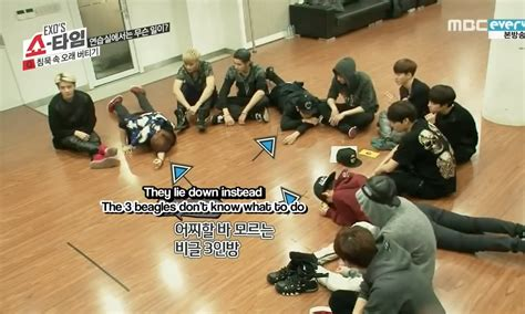 exo showtime ep 5 5 reasons why exo s beagle line is called the beagle line
