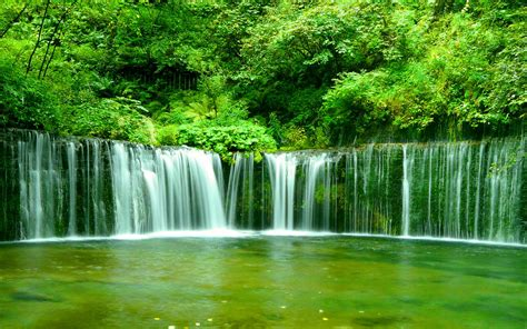 beautiful greenery of real nature scene wallpaper free 川の壁紙 1920 215 1200 1 スマホ pc用壁紙 wallpaper box