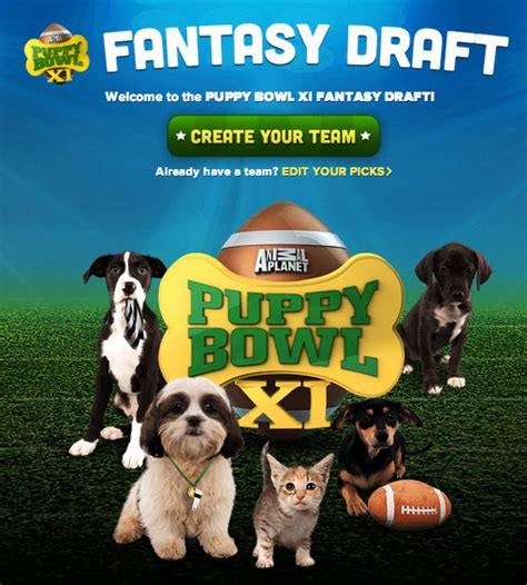 puppy bowl 2015 puppy bowl 2015