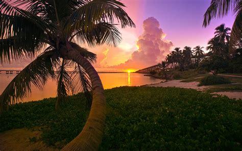 fond decran lumiere du soleil paysage le coucher du