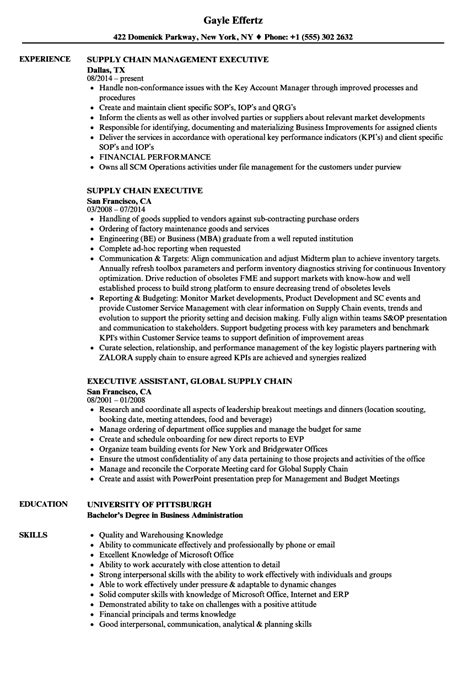 supply chain executive cv format supply chain executive resume sles velvet