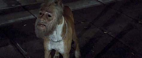 Hangrope A Rancho Diablo Story jinmenken los perros con rostros humanos de 243 n
