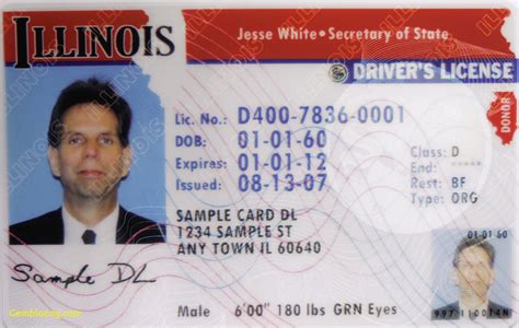 illinois id card template new drivers license template best templates