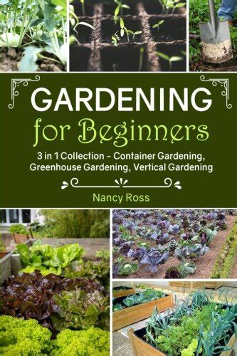 How To Start A Vegetable Garden For Beginners Starting A Vegetable Garden For Beginners