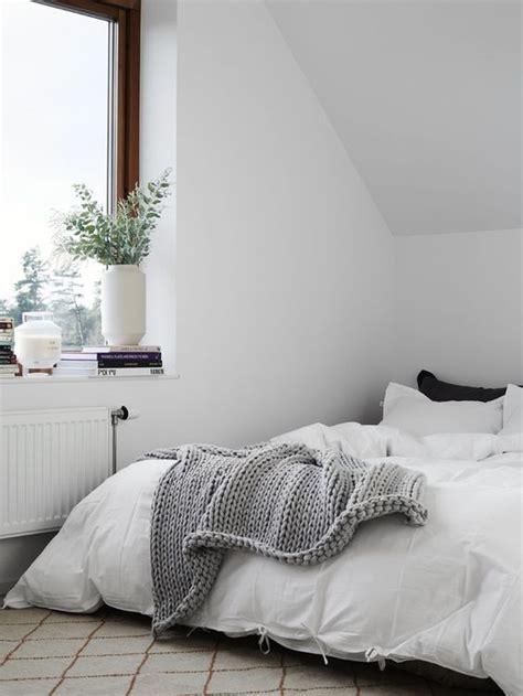 bedroom   plant