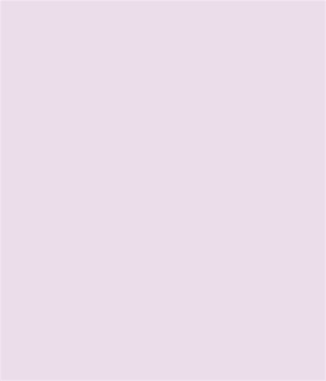 buy asian paints apcolite premium emulsion pallid violet at low price in india snapdeal