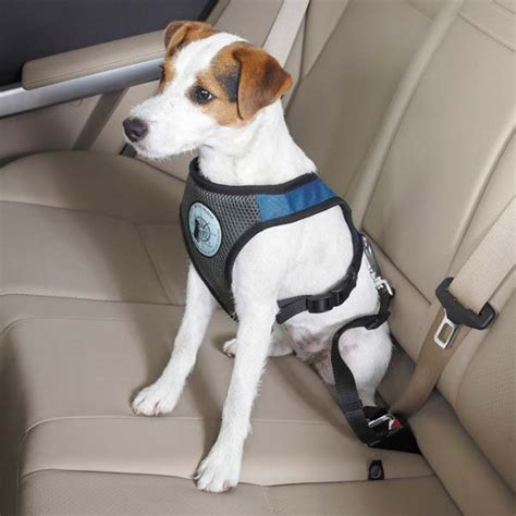 car harness for dogs car seat harness for dogs get free image about wiring diagram