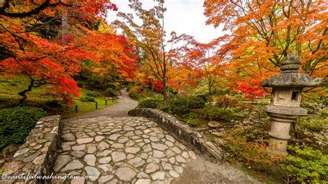 autumn garden japanese garden fall gallery