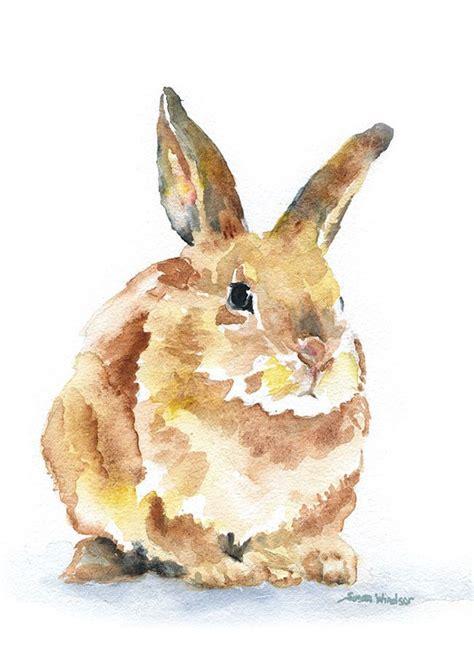 watercolor rabbit tutorial 441 best watercolor images on pinterest watercolor