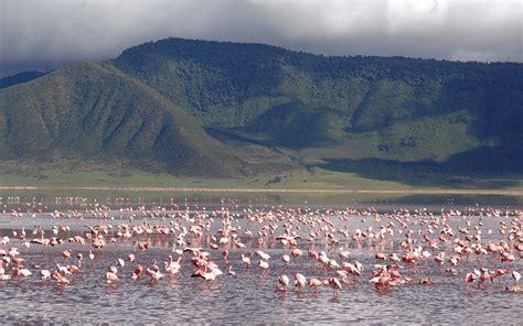 andBeyond Ngorongoro Crater Lodge Bateleur Club