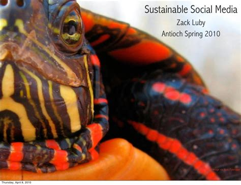 Social Sustainable Mba Csu by Social Media For Antioch Green Mba Program
