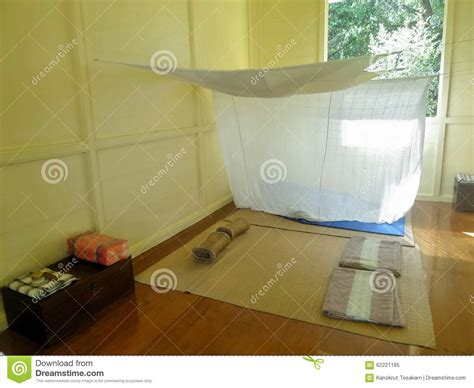 mosquito in my room mosquito net in bright wooden bed room and mat stock photo image 62221185