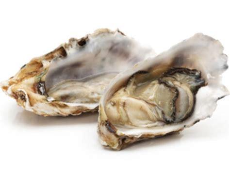 Kerang Oyster austern eat smarter