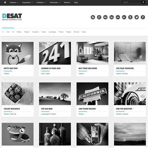 desat responsive portfolio wordpress theme best